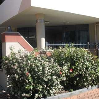 Thumbnail of 108/36 Victoria Road, Mt Maunganui, Tauranga City 3116