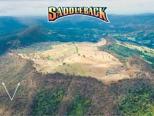 """Saddleback Aggregation"", Canungra - Gold Coast Hinterland - Canungra"