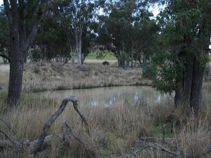 INVERELL, INVERELL, NSW 2360
