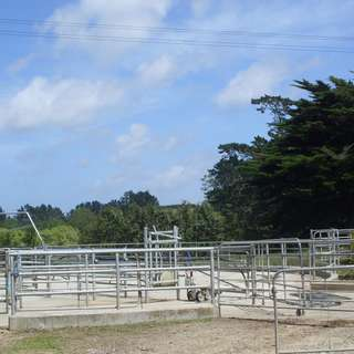 Thumbnail of 260b Bain Road, Ruawaro, HUNTLY, Waikato District 3700