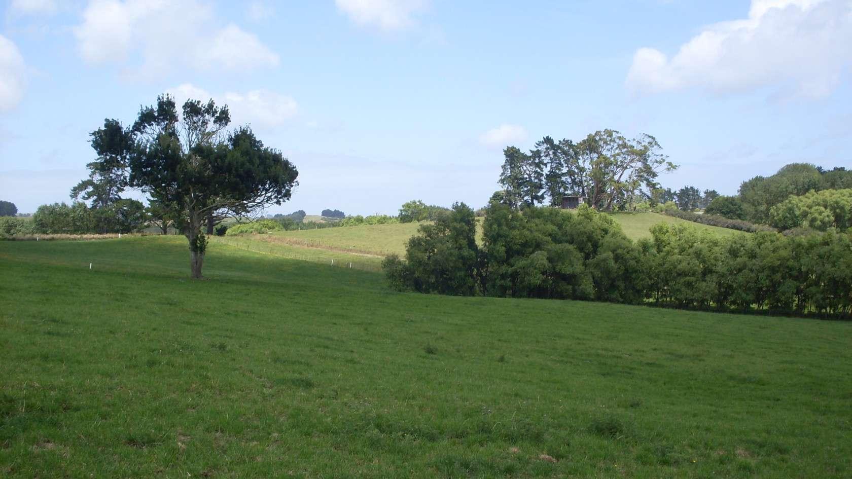 260b Bain Road, Ruawaro, HUNTLY, Waikato District 3700