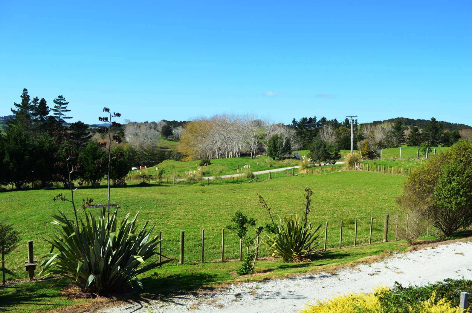 53 Settlement Road, KAIWAKA, Kaipara District 0573