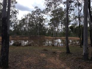 Bargain Basement Acreage close to the city - Ringwood