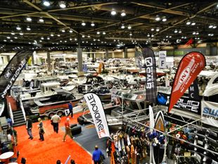 """business For Sale"" High Profit Marine Dealership - Burleigh Heads"