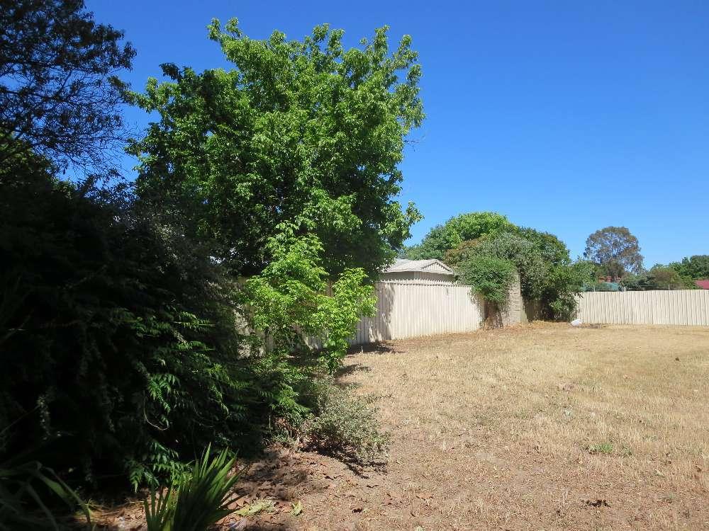 391 David Street, South Albury, NSW 2640