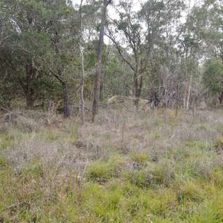 Thumbnail of 1391 Booral Road, Sunshine Acres, QLD 4655