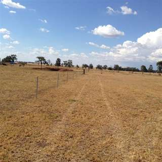 Thumbnail of 19 Holland Place, Gilgandra, NSW 2827