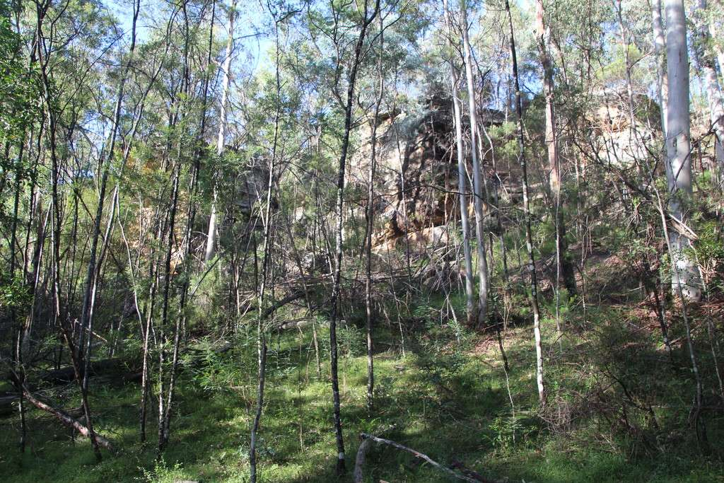 Lot 54 Putty Road, Garland Valley, NSW 2330