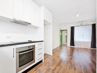 Fully Renovated Ground Floor Unit with Private Yards - Broadview