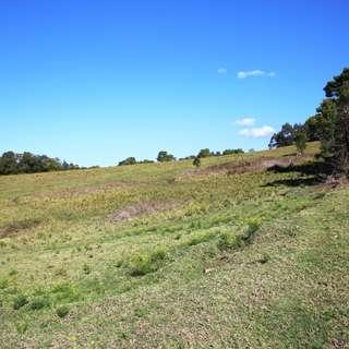 Thumbnail of Lot 409 Huntingdale Park Estate, Berry, NSW 2535