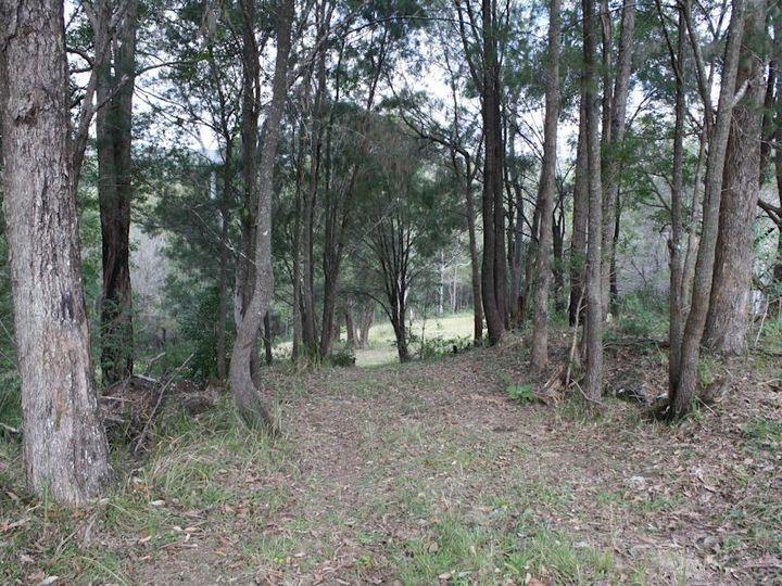 Mooloolah Valley, QLD