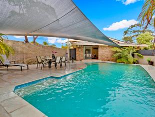 Easy Family Living with Bush Views - Frenchs Forest
