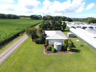 43 ACRES WITH 2 HOUSES AND BUSINESS - Yungaburra
