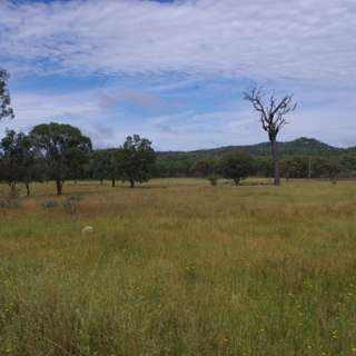 Thumbnail of INVERELL, INVERELL, NSW 2360