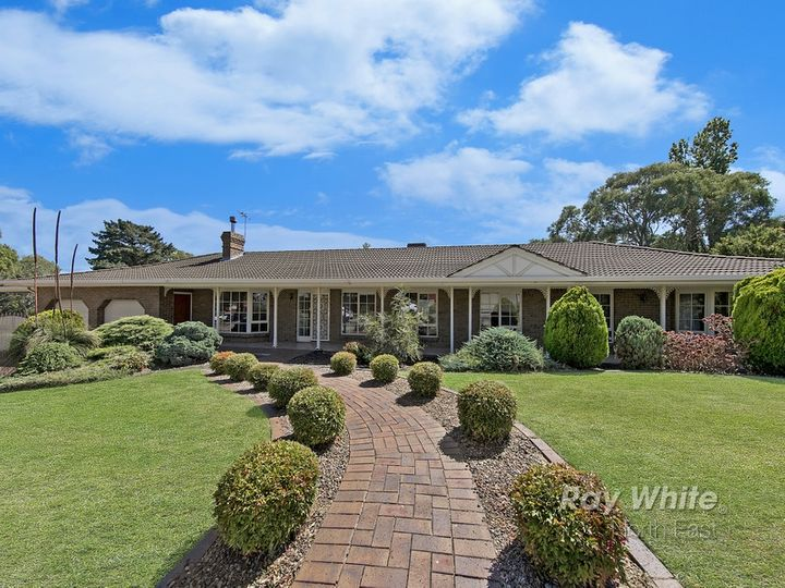 10 Neale Street, Tea Tree Gully, SA