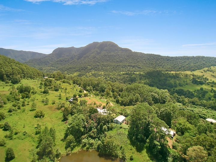 659-675-685 Hopkins Creek Road, Chillingham, NSW