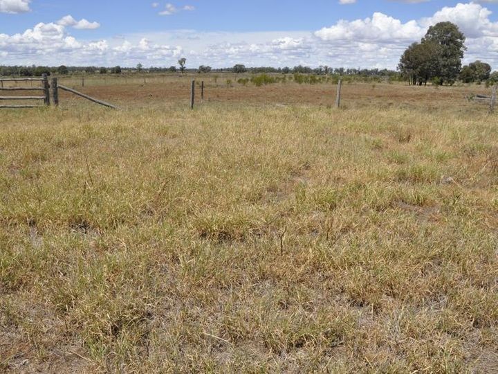 Lot 8 'Kakohie' Butlers Road, Miles, QLD