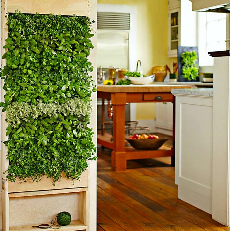 Three Ideas For Creating An Indoor Garden News Ray White Picton