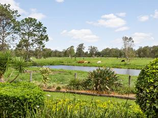 DREAM HOME!! MASSIVE 262 M2 SHED!! LUSH GRAZING LAND!! - Burpengary East