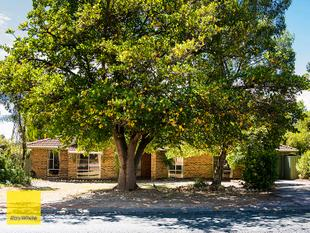 NEW PRICE - ALL OFFERS FROM $445,000 WILL BE CONSIDERED - Lesmurdie