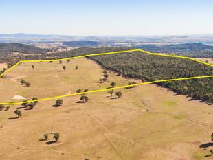 372.1Acres* of Rich Creek Country & Feedlot Paddocks - Cowra