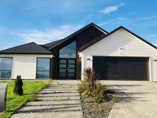 Brand new single level family home - Orewa