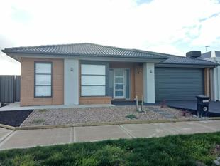 Available Now! Beautiful Home in Grove Estate - Tarneit