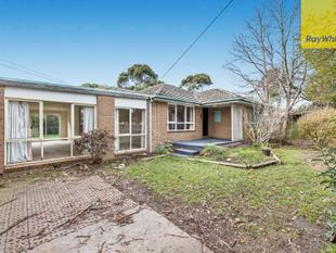 Large Home on a Gorgeous Block - Bayswater North