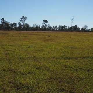 Thumbnail of 74 Glenbar Road, ST MARY, QLD 4650