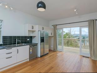 3 Bedroom Home - Grey Lynn - Grey Lynn