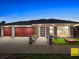 Prime Location & Loving Family Home - Melton West