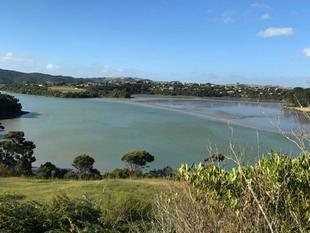 Rangitahi Peninsula Section - Raglan