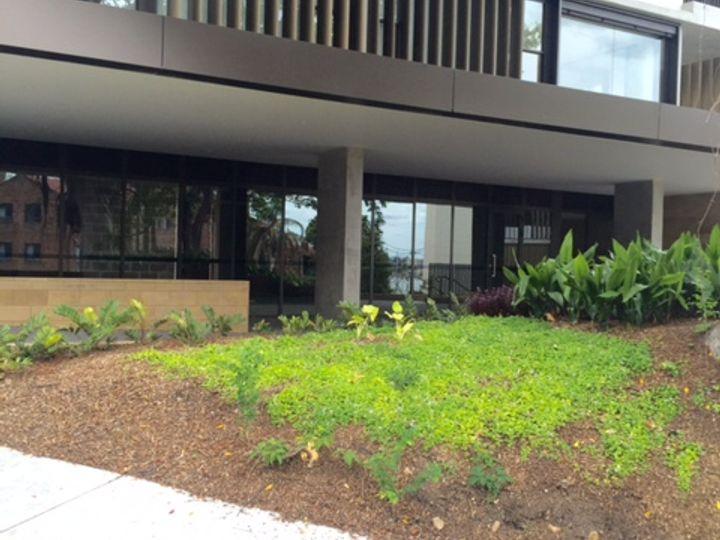 1R/100 Elliott Street, Balmain, NSW
