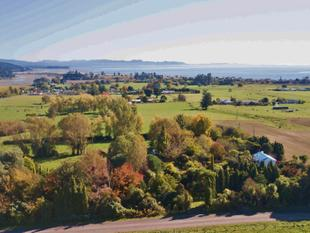 12 GLORIOUS ACRES IN GOLDEN BAY - Takaka