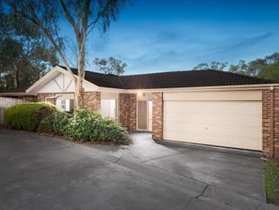 Enticing Family Appeal - Bayswater North