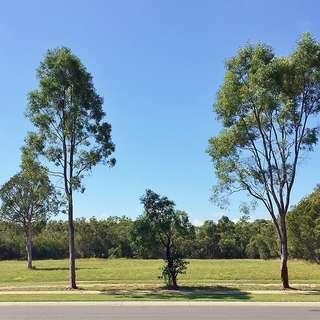 Thumbnail of 11 Southern Cross Circuit, Urangan, QLD 4655