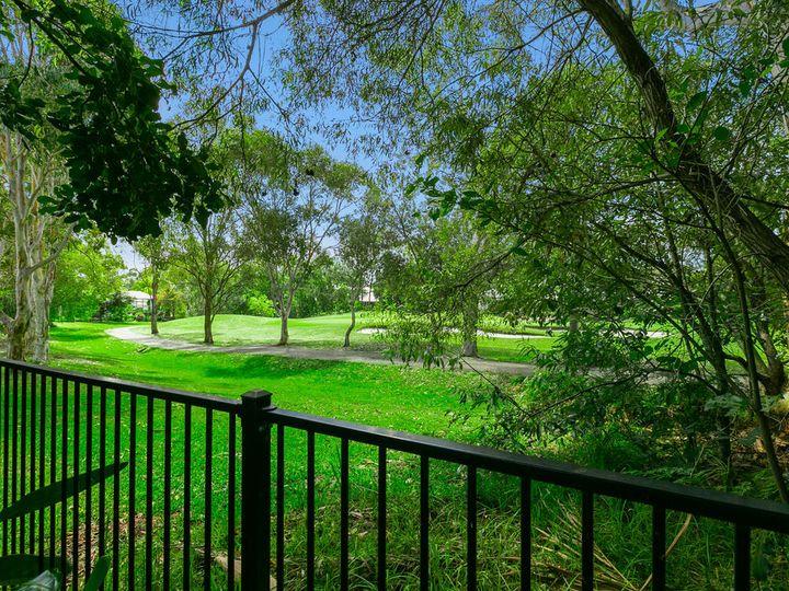 109 The Avenue, Peregian Springs, QLD