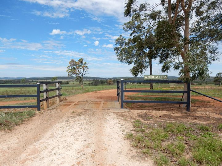 1500 Westwood-Wowan Road, Pheasant Creek, QLD