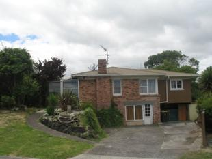 XXXL family home looking for new Family - Manurewa