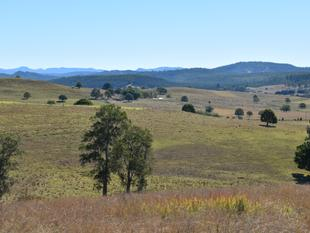 Perfect grazing country, with the opportunity to build - Doubtful Creek