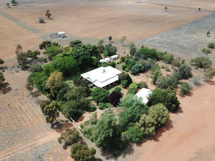 'Ossory' Aggregation, Narromine, NSW