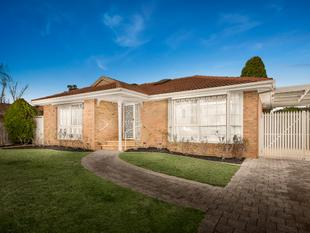 An Inviting Family Tone - Rowville
