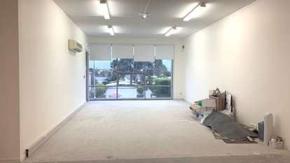 Ground floor 36 Williamson Avenue, Grey Lynn