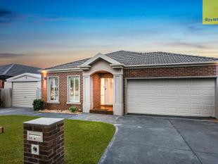 The Ultimate Family Home - Berwick