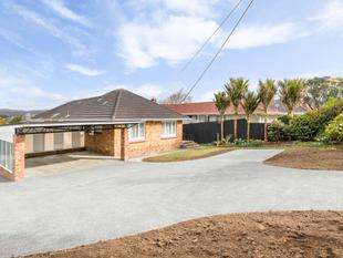 Options abound: Hot land and/or Cool house. - Titirangi