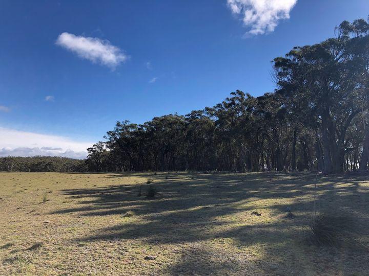 88b Kirriford Road, Nerriga, NSW