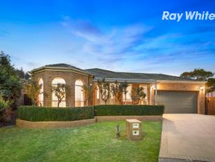 Relaxing family retreat & endless entertaining - Dingley Village