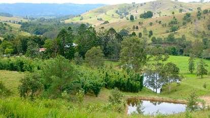 Laceys Creek