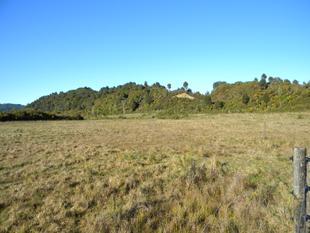 1.1ha Close To Town - Hokitika