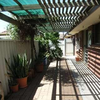 Thumbnail of 4/7 Gordon Street, Kurralta Park, SA 5037